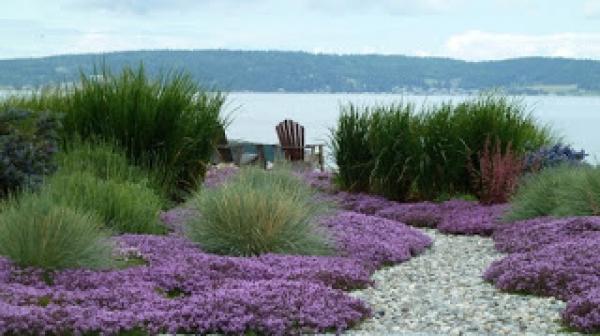 Jardines junto al mar
