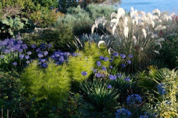 ¿Cómo diseñar un jardín junto al mar?